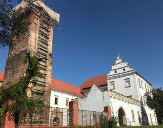 Zamek w Prochowicach (remont) 491366