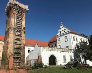 Zamek w Prochowicach (remont) 491367