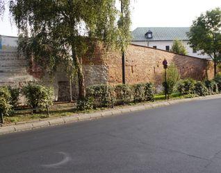 [Kraków] Remont, Konserwacja Muru, ul. Paulińska  442729