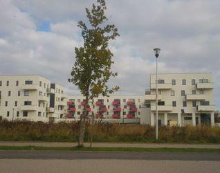 """[Wrocław] Osiedle """"Mariposa"""" 294762"""