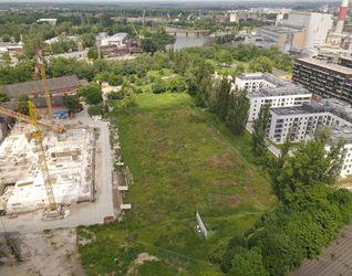 Park Kępa Mieszczańska 479856