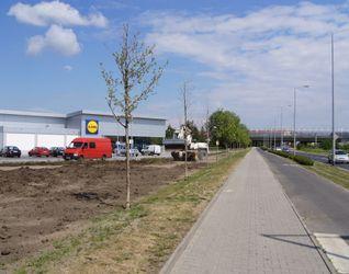 """[Wrocław] Supermarket """"Lidl"""", ul. Królewiecka 41485"""
