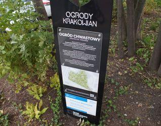 [Kraków] Park Kieszonkowy, ul. Wadowicka 493188