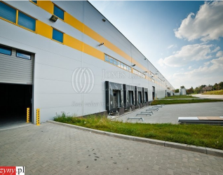 [Kraków] Witek AirPort Logistic Center 99716