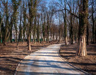 [Wrocław] Rewitalizacja Parku na Tarnogaju 368022