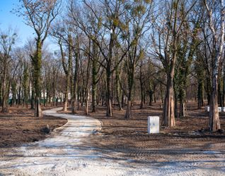[Wrocław] Rewitalizacja Parku na Tarnogaju 368024