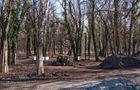 [Wrocław] Rewitalizacja Parku na Tarnogaju