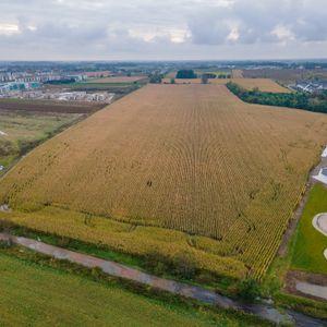 Zielony Klin Południa Wrocławia 493981