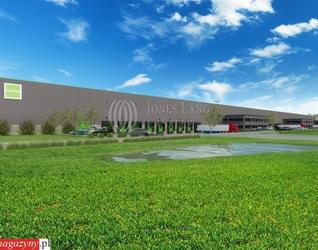 [Pabianice] Goodman Łódź Logistics Centre 102067