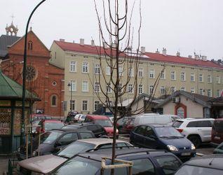 [Kraków] Remont Elewacji, ul. Św. Filipa 19 202431