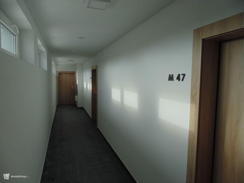297412_1500x.jpg