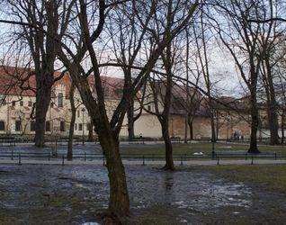 [Kraków] Renowacja Bazyliki i Klasztoru Franciszkanów, ul. Franciszkańska 411864