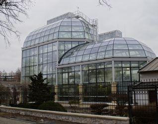 [Kraków] Ogród Botaniczny 458968
