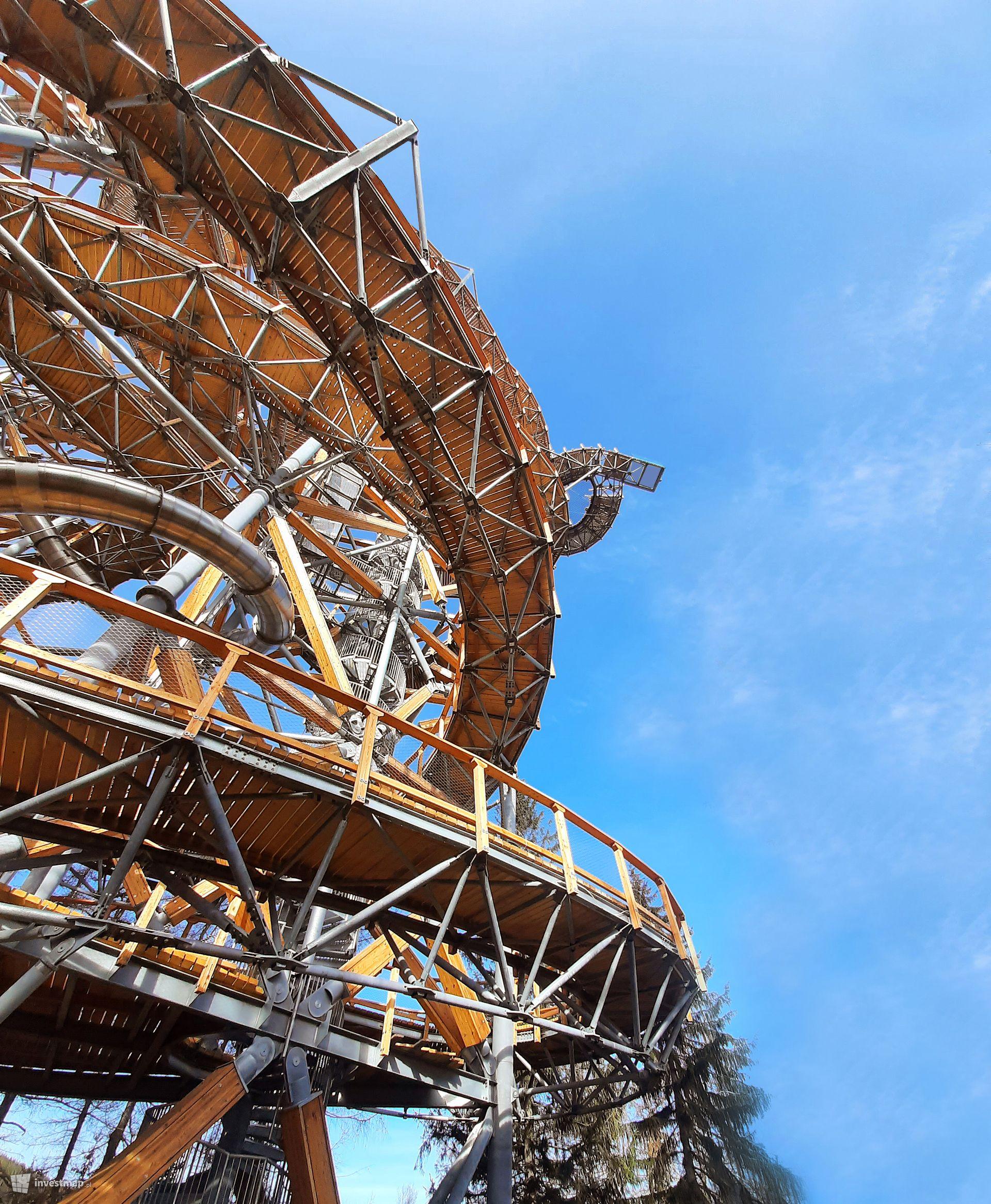 Sky Walk - wieża widokowa ze ścieżką edukacyjną w koronach drzew