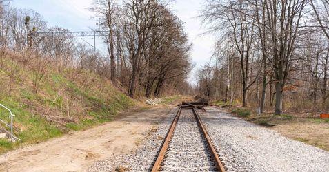 Trasa tramwajowa na Jagodno 512994