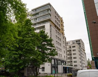 [Warszawa] Sakura 425960