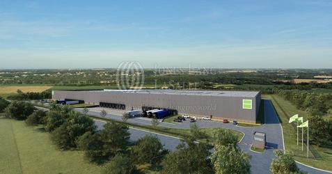 [Niepruszewo] Goodman Poznań Logistics Centre 98841