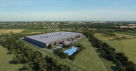[Niepruszewo] Goodman Poznań Logistics Centre 98842