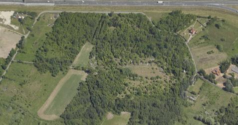 Fort piechoty nr 8a (Infanterie Stutzpunkt 8a) Góra Owsianka 473861