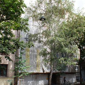 [Kraków] Remont Kamienicy, ul. Paulińska 20 485195
