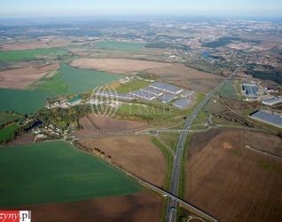 [Pruszcz Gdański] SEGRO Logistics Park Gdańsk 101966