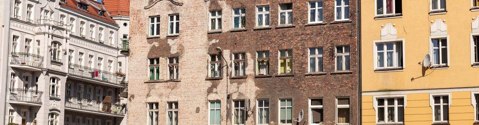 [Wrocław] Ptasia 30 431697