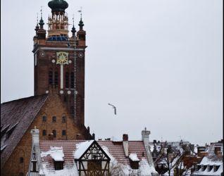 [Gdańsk] Renowacja Kościoła św. Katarzyny 11870
