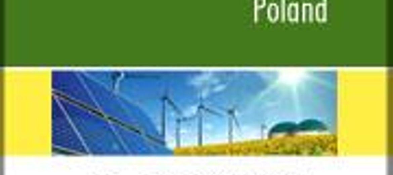 Polska stawia na energię