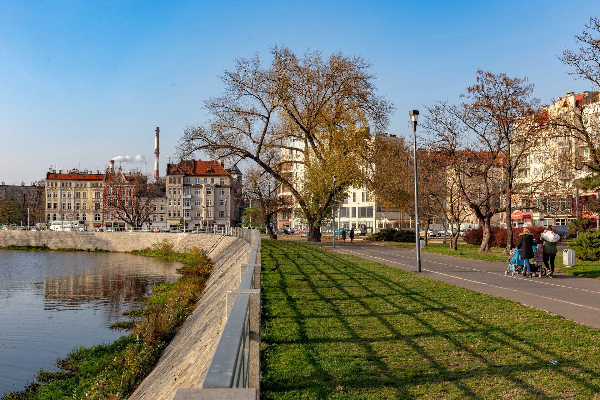 Wrocław: Miasto wraca do rewitalizacji bulwaru na Nadodrzu. Szuka wykonawcy