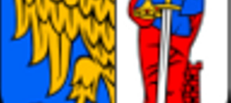 Ruda Śląska przejmie pokopalniane
