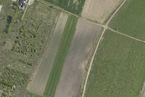Wrocław: Państwo sprzedaje ponad 4,3 hektara ziemi na Wojszycach