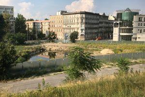 Wrocław: Develia rusza z przygotowaniami do budowy biurowca w miejsce dawnego szkieletora