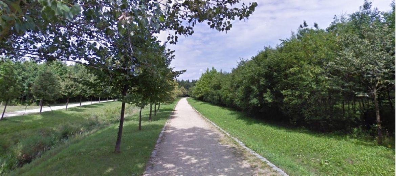 W trzech wrocławskich parkach