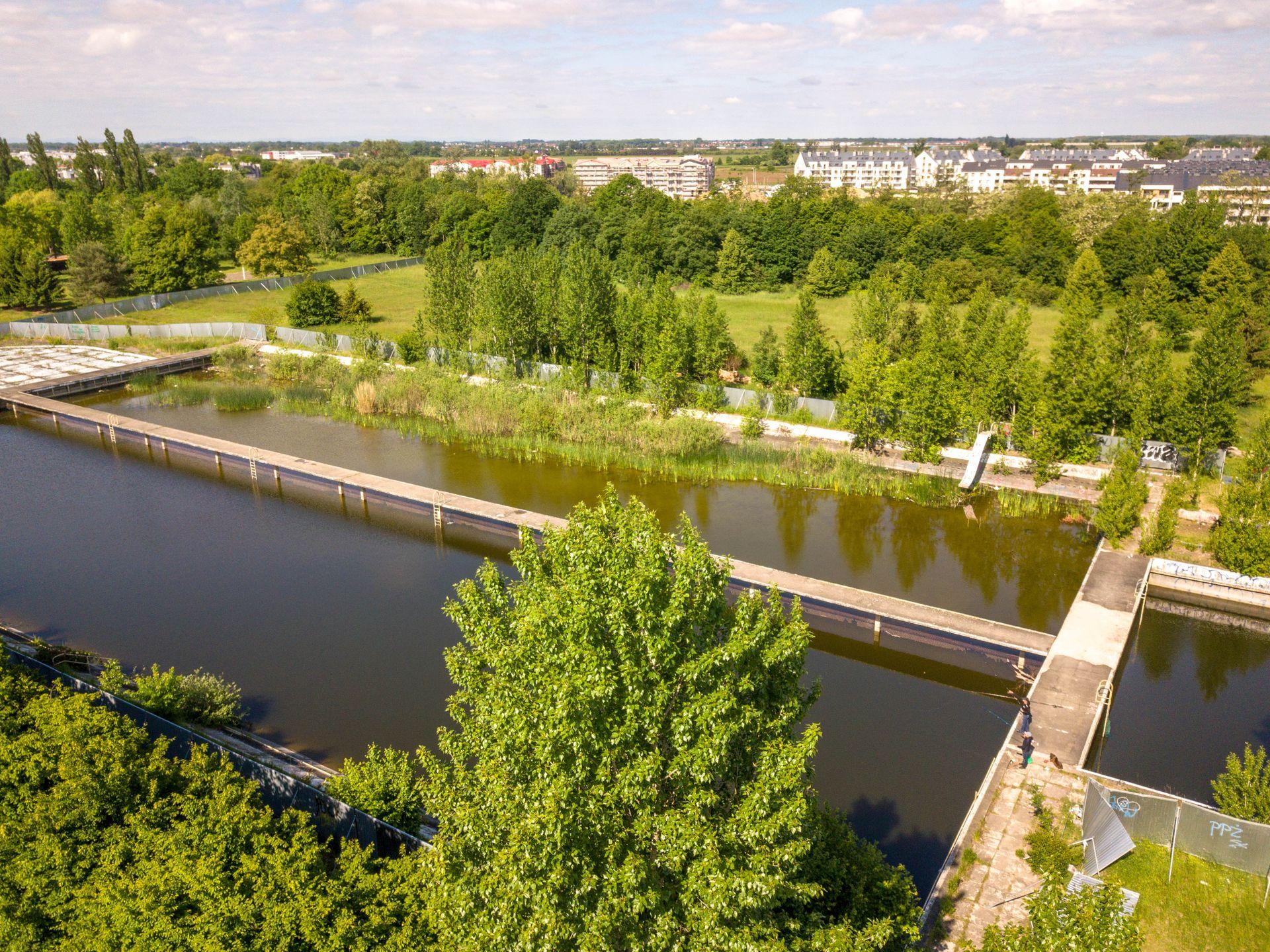Wrocław: Państwowe działki przy oporowskim kąpielisku bliskie sprzedaży. Są warte kilkanaście milionów