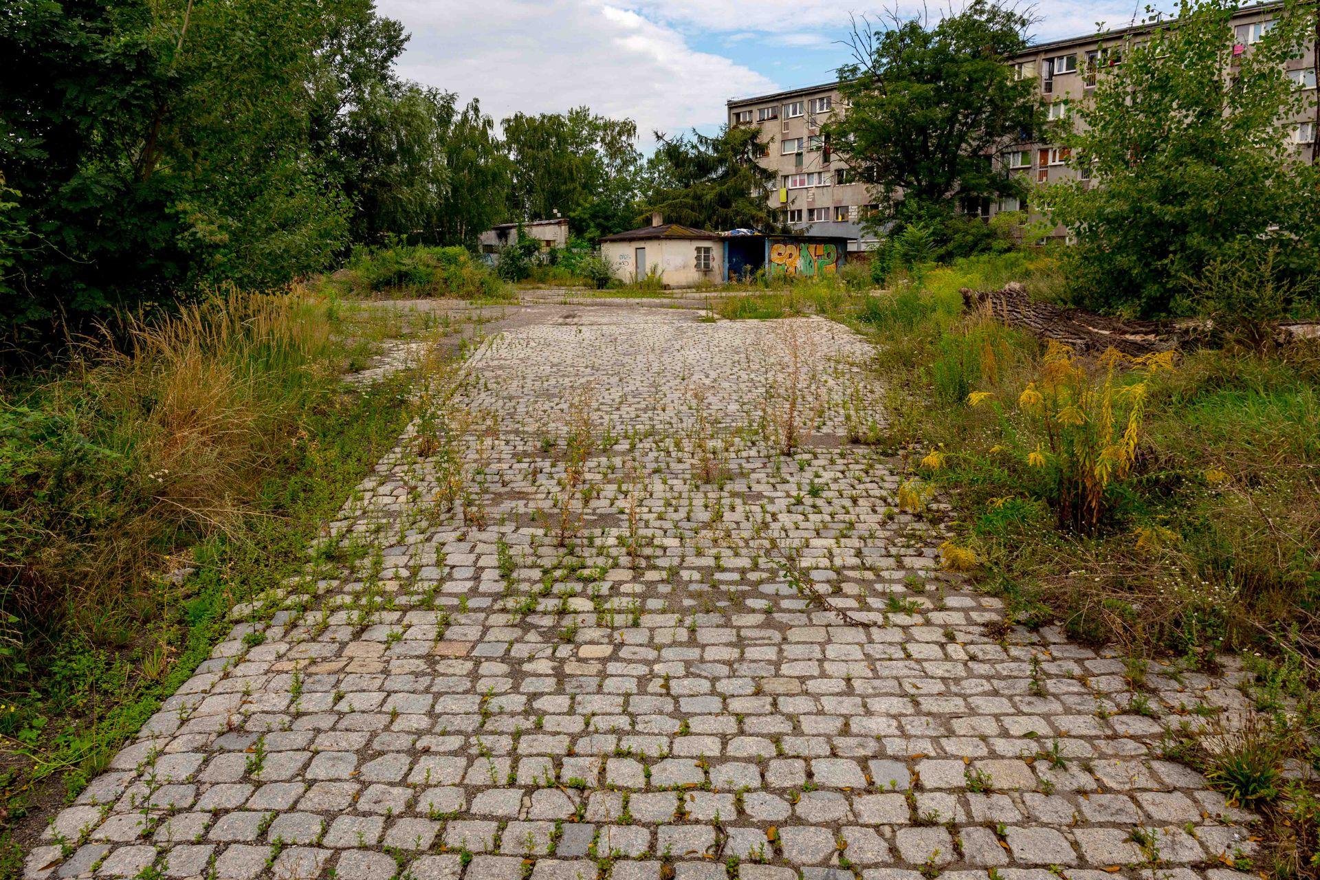 Wrocław: Lokum Deweloper płaci niemal 40 mln zł za teren na Szczepinie. Będą wyburzenia