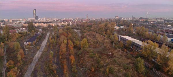 Wrocław: Po konsultacjach czas na projektowanie parku Henrykowskiego. Jest konkurs