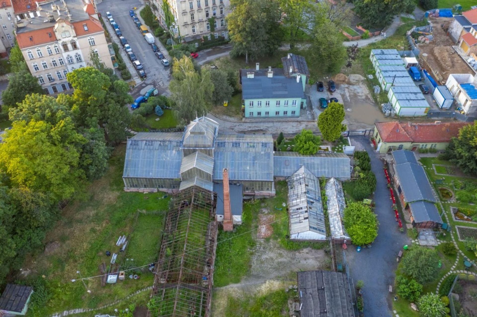 Legnica: Rusza rewitalizacja zabytkowej palmiarni