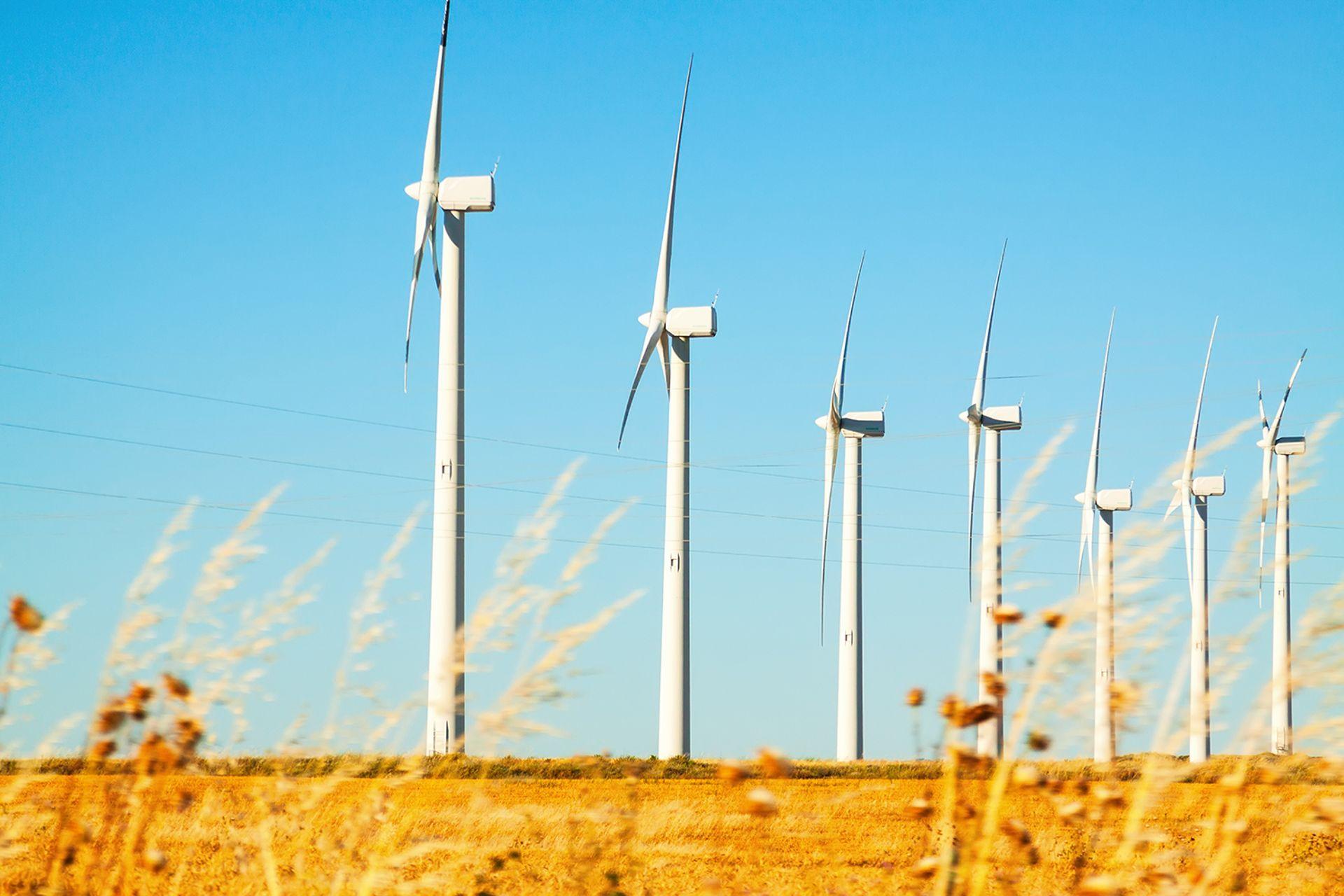 Polenergia planuje kolejną farmę wiatrową. Stanie w gminie Kostomłoty