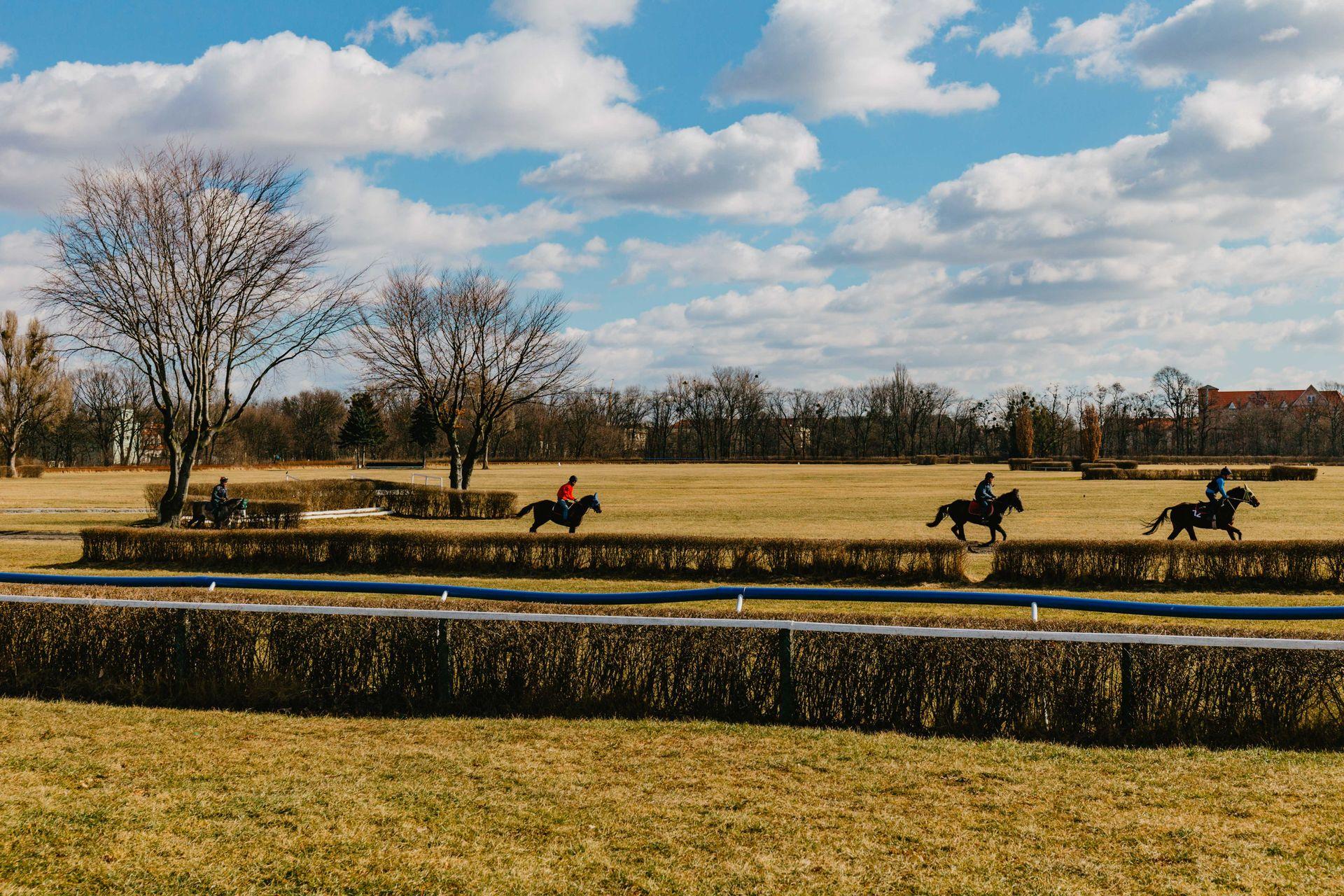 Wrocław: Nowa hala namiotowa na torze wyścigów konnych. Miasto szukało wykonawcy od sierpnia