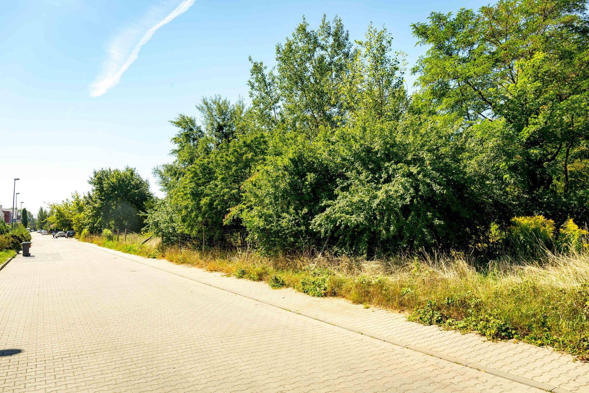 Wrocław: Lokum Villa Nova – Lokum Deweloper może startować ze swoją pierwszą inwestycją na Kowalach