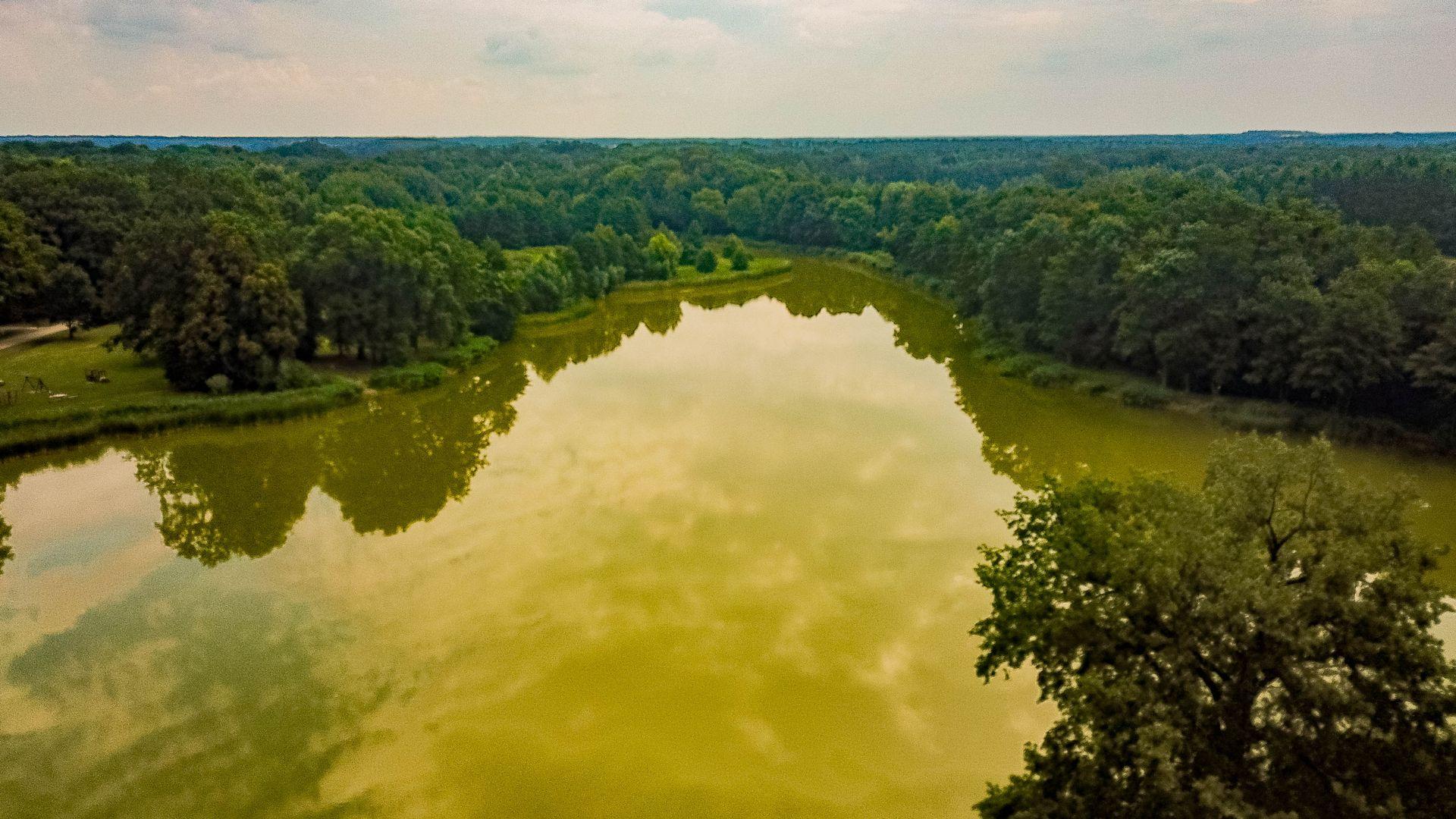 Zielona Dolina – program wart 300 mln zł ma pomóc w rozwoju biogospodarki na Dolnym Śląsku