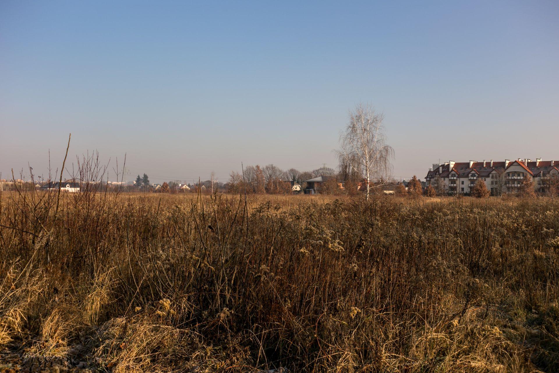 Wrocław: Develia zbuduje ponad 600 mieszkań blisko granicy Ołtaszyna i Wojszyc